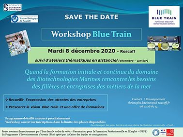 Save the date le 8 décembre 2020  pour le Workshop Blue Train  à Roscoff