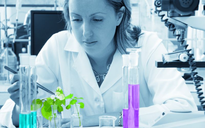 Scientist researching a green plant